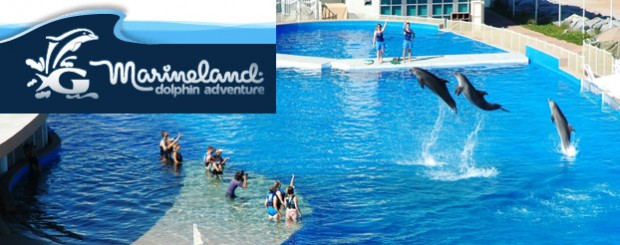 Marineland Dolphin Conservation & Research Center